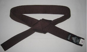 Belt Brown 2.5m x 40mm