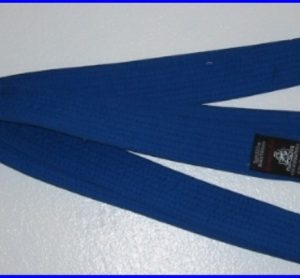 Belt Blue 2.7m x 40mm