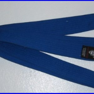 Belt Blue 3.0m x 40mm
