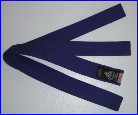 Belt Purple 2.0m x 40mm