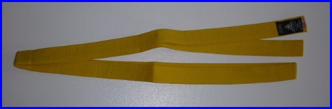 Belt Yellow 2.0m x 40mm