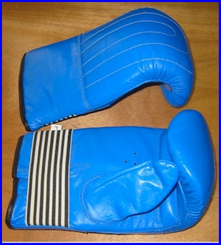 Gloves Med Weight Leather Lg Blue