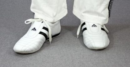 TKD Shoe, White & Black, size 41