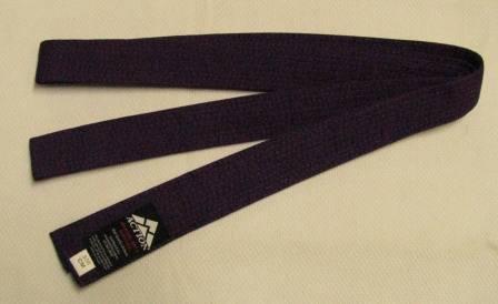 Belt Purple 3.5m x 40mm